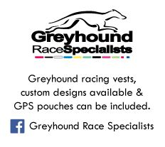 web-greyhounds-latest